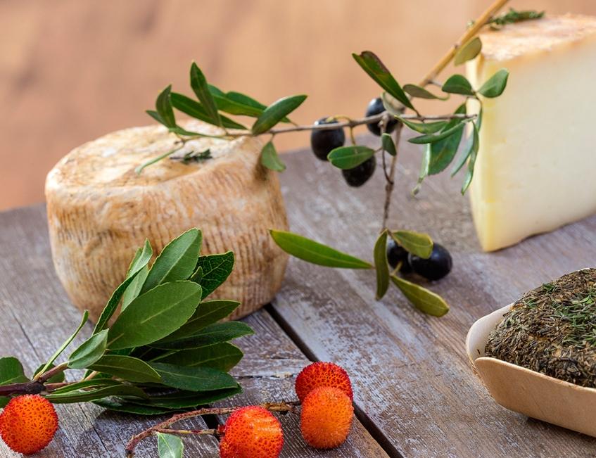 fromage du moule